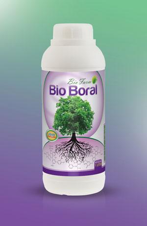 BioBoral